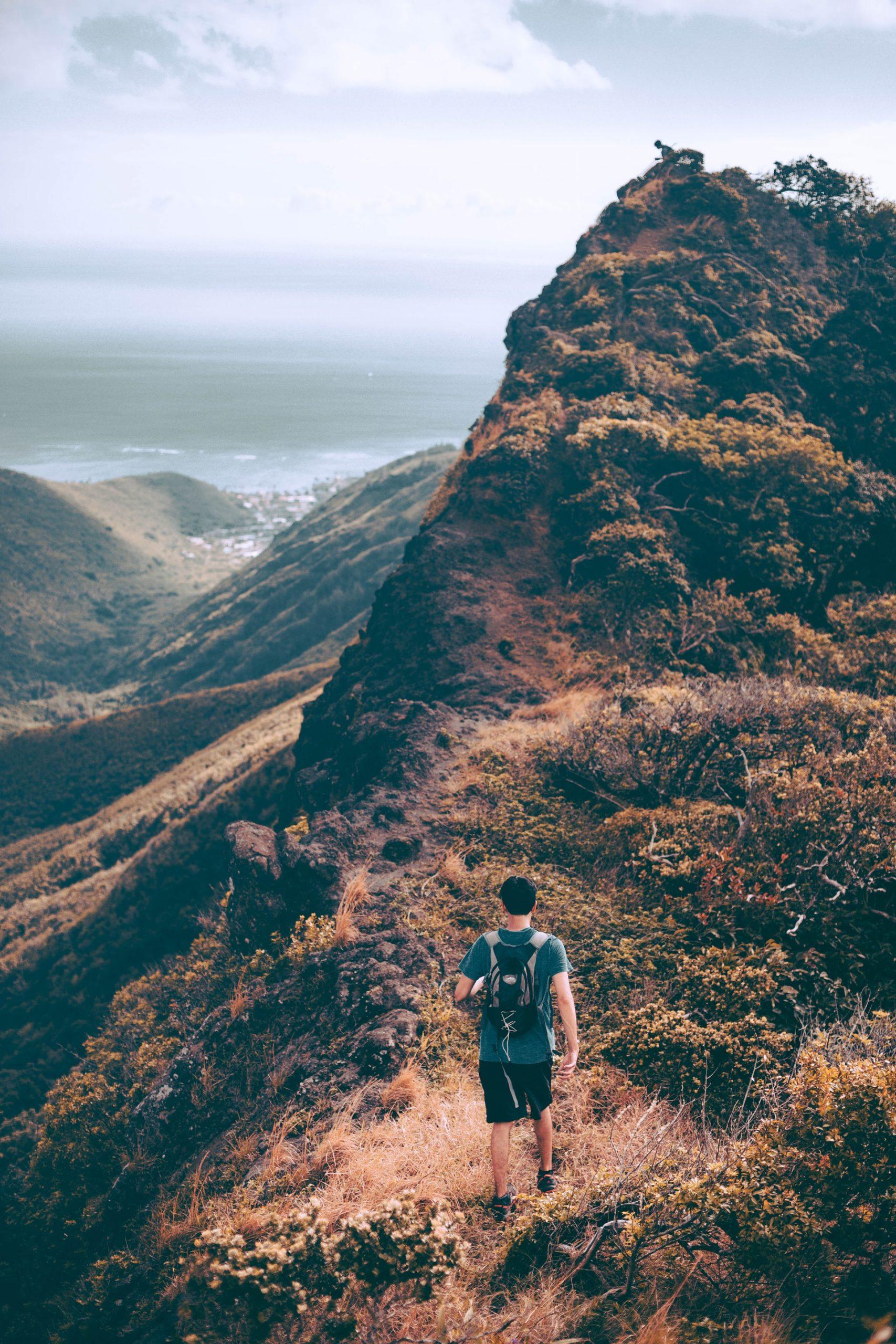 mountain-hawai